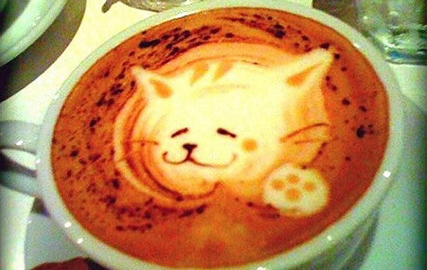 bol café art