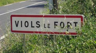 village 11