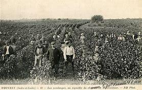vignerons autrefois