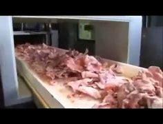 Résultat d'images pour gélatine de porc images